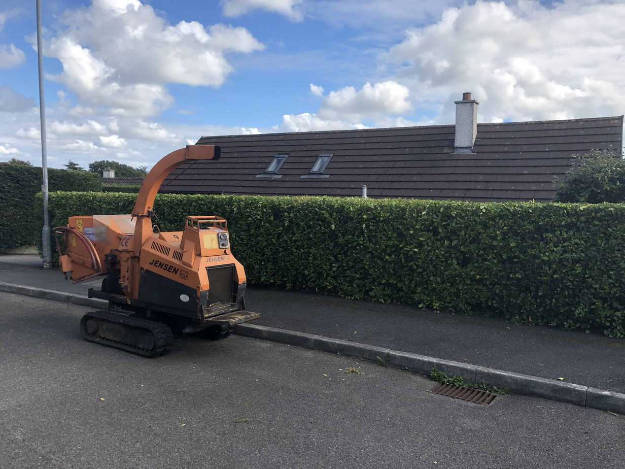 Hedge-trimming-Truro